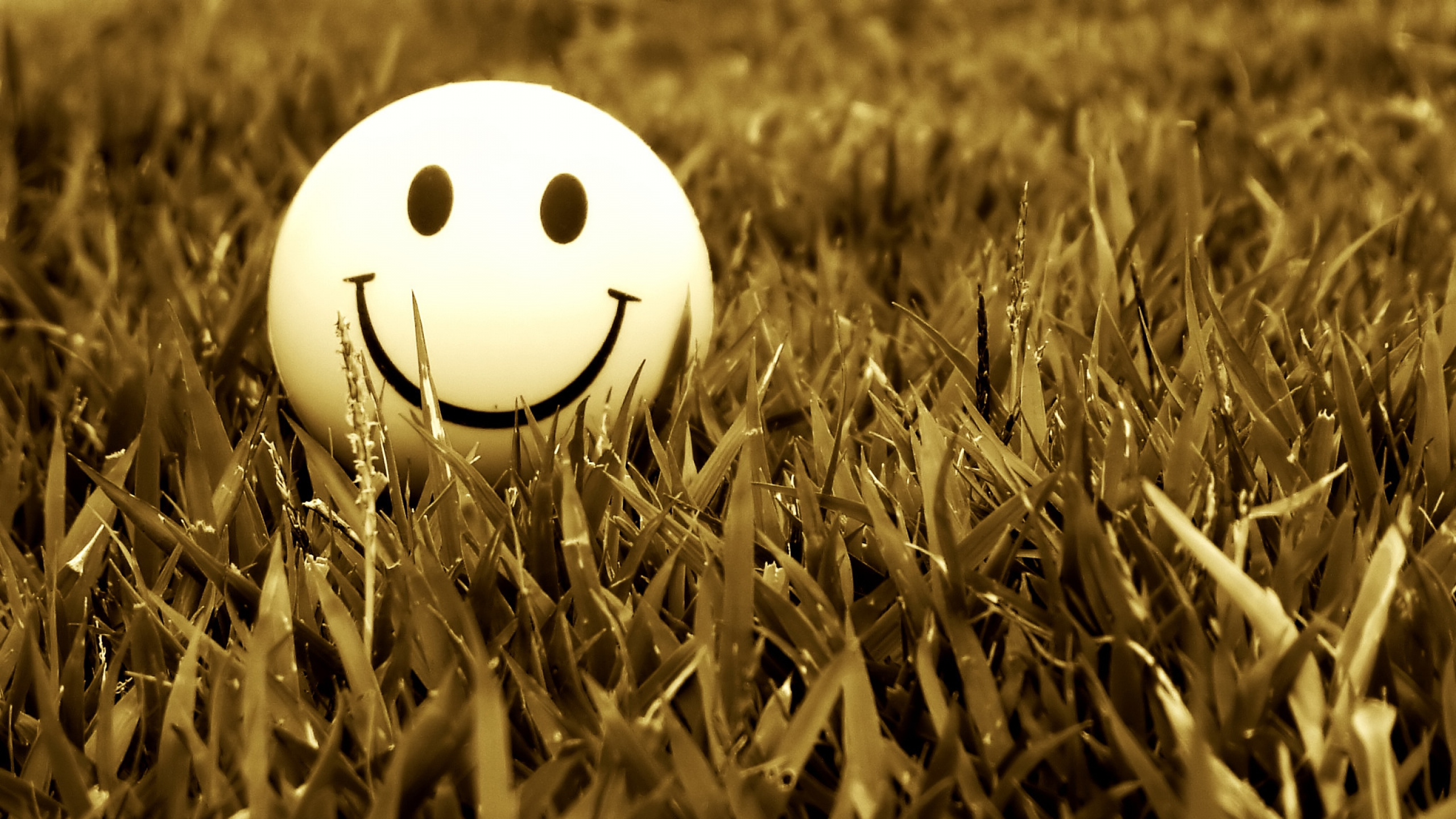 6803186-mood-smile-background
